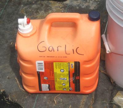 47_garlic.jpg