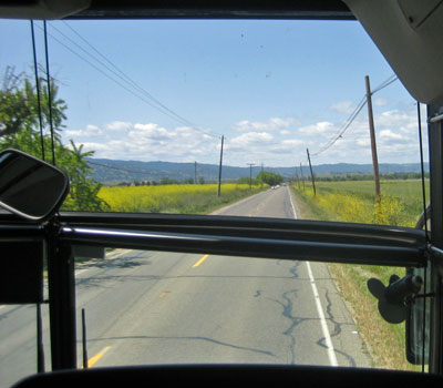 img_4139_bus_view.jpg