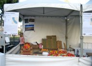 market_tomato.jpg