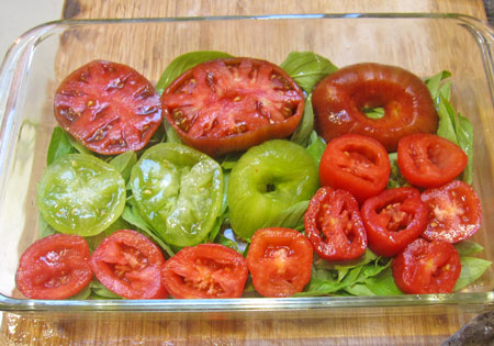 first layer of tomatoes
