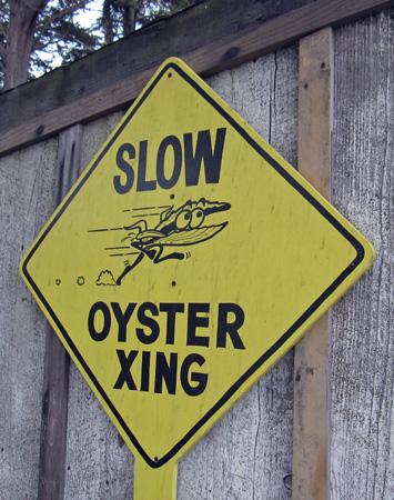 sr_oyster_crossing