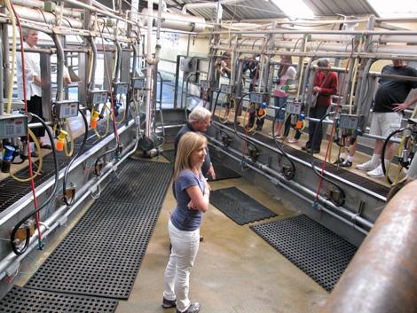 PtR_milking_parlor
