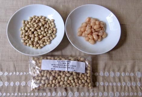 m_beans