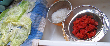 cooked rice and chopped tomatoes